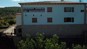 Bodegas Borraz